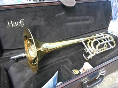 model42.JPG